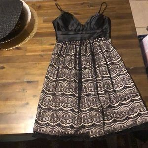 Max and Cleo tea party black lace dress